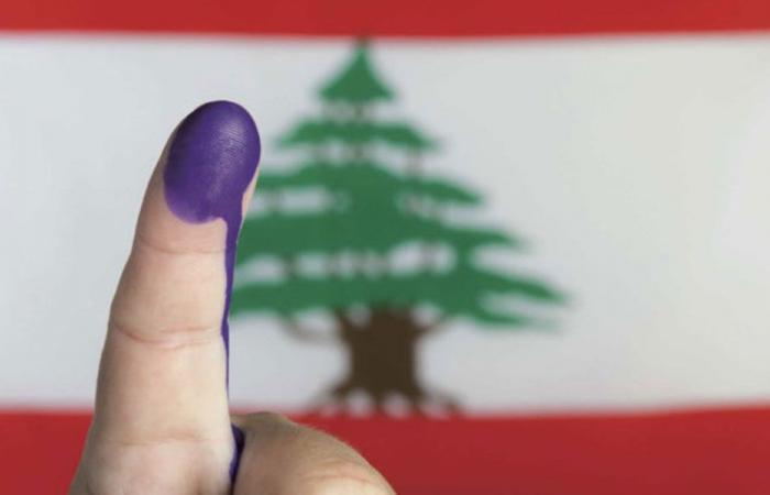 """انتخابات فرعية في جمهورية """"لالا لاند"""""""
