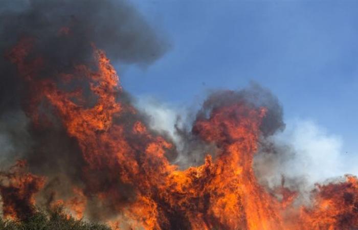 كاليفورنيا.. حريق ضخمٌ يجبر الآلاف على ترك منازلهم! (فيديو)